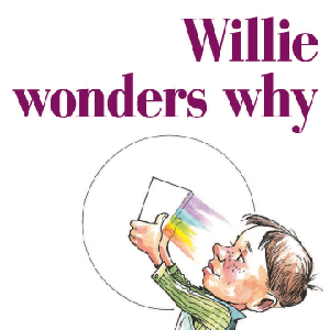 Willie Wonders Why