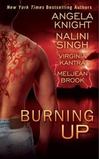burning-up